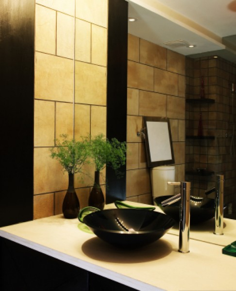 bathroom mirror,vanity,glass,mirror,glass shelving,shower doors,tub enclosure,European shower,glass countertop