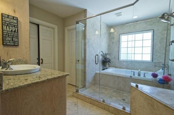 Shower Door/Bathtub Combination